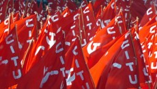 citu-flags_jpg_image_784_410