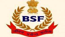 bsf-new