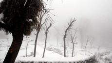 snowfall-in-kashmir.jpg.image.784.410