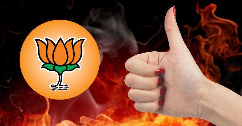 BJP's income