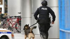 America police