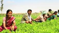 jarkhand farmers