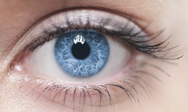 The-eye-
