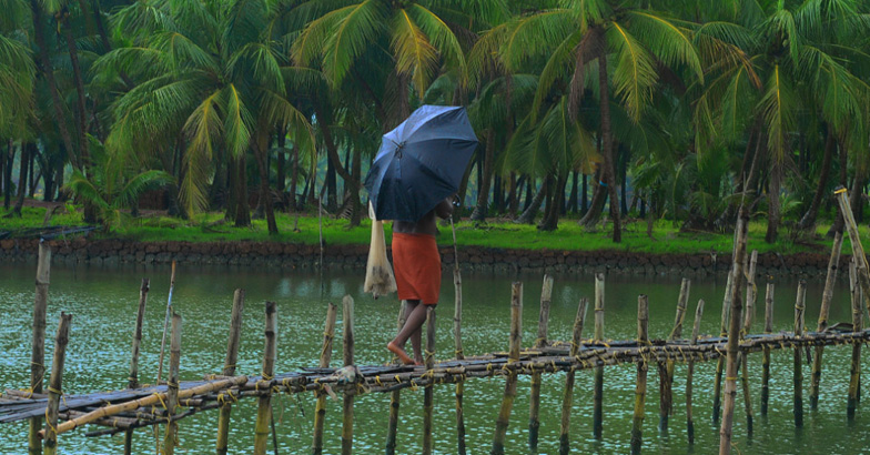 monsoon kerala